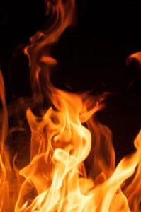 fire_flames_on_a_black_background_blaze_fire_flame_cg1p15993988c_th-1-.jpg